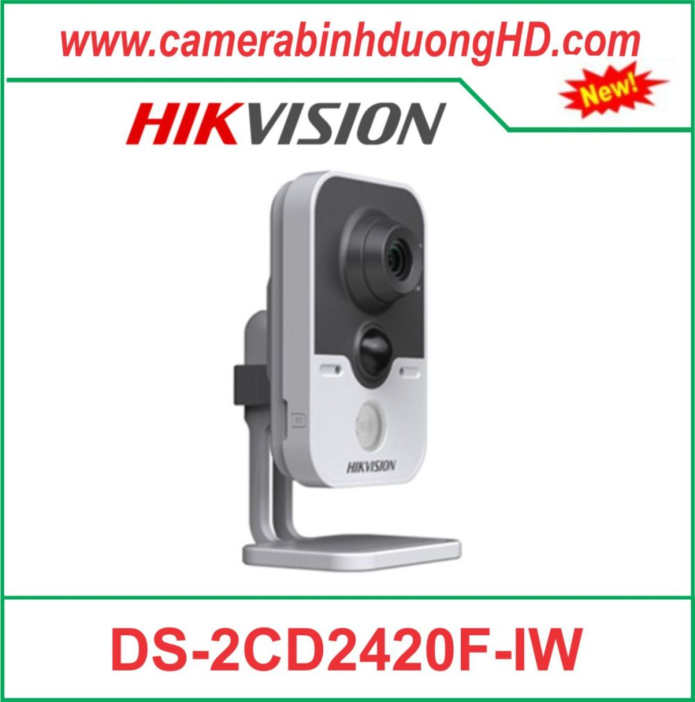 Camera quan sát DS-2CD2420F-IW